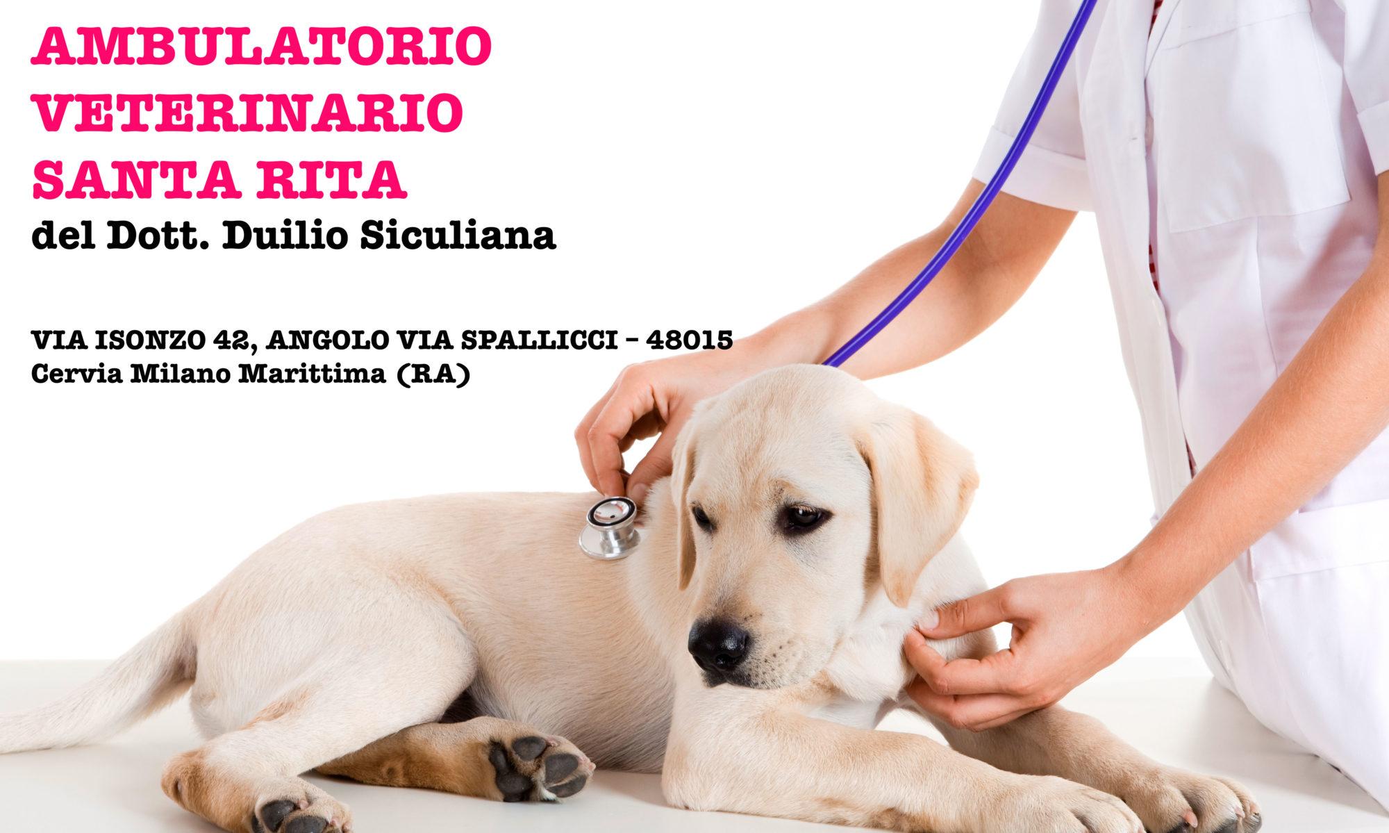 Studio Veterinario Santa Rita